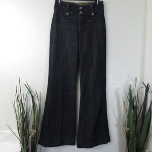 Butterfinger Flare Dark Wash High Rise Denim Jeans